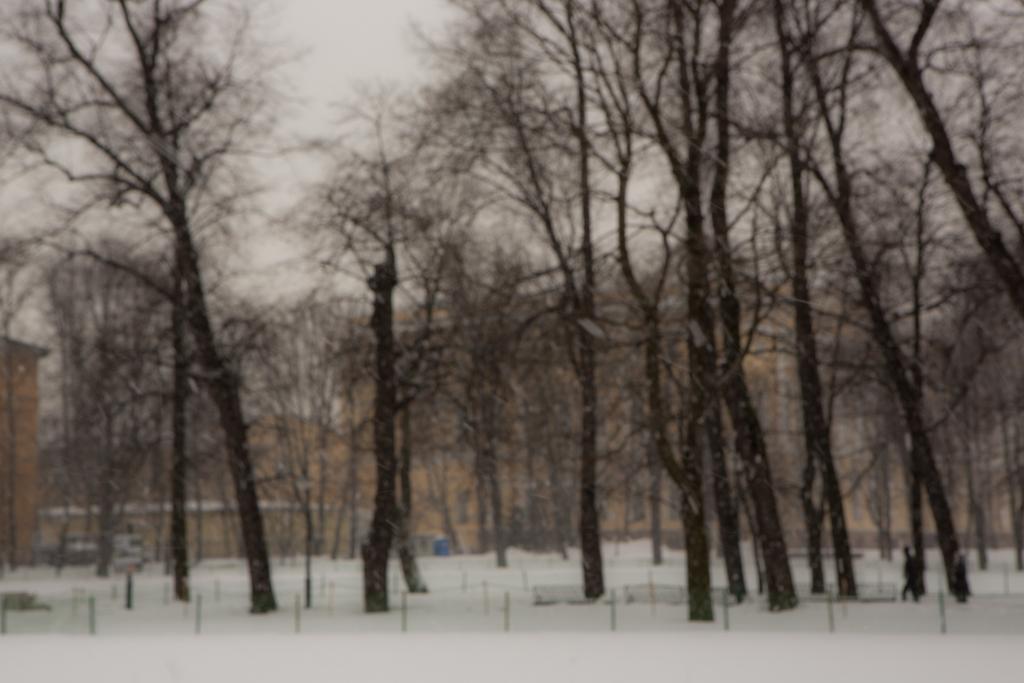 St-Petersburg-2-19